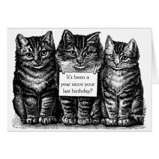 Cartão de aniversário dos gatos do vintage