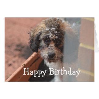 Cartão de aniversário dos meninos