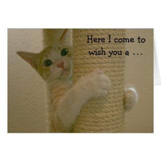 Cartão de aniversário engraçado com gato de