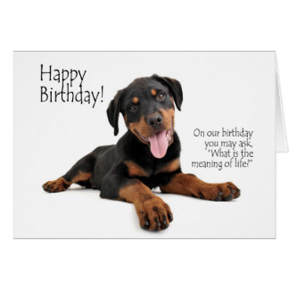Cartão de aniversário engraçado de Rottie
