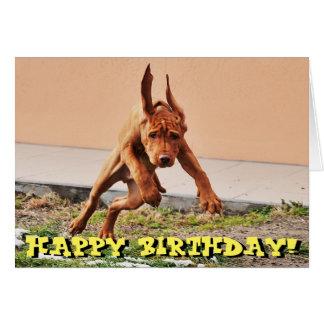 Cartão de aniversário engraçado do filhote de