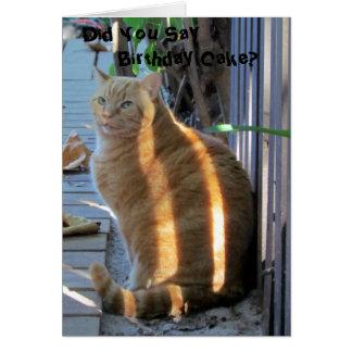 Cartão de aniversário gordo do gato