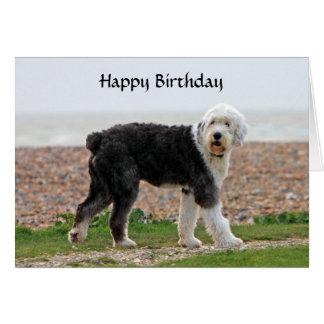Cartão de aniversário inglês velho do cão do