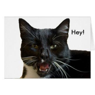 Cartão de aniversário: Ou então gato