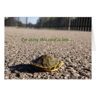 cartão de aniversário tardivo da tartaruga