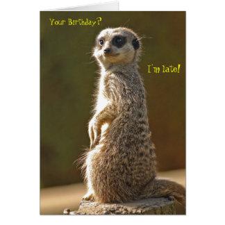 Cartão de aniversário tardivo de Meerkat