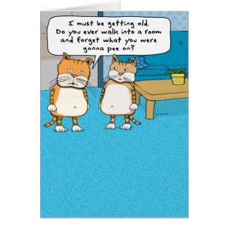 Cartão de aniversário velho engraçado do gato