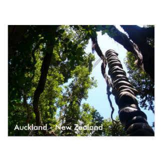 Cartão de Auckland Cartão Postal