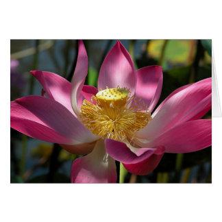 Cartão de Bali Lotus