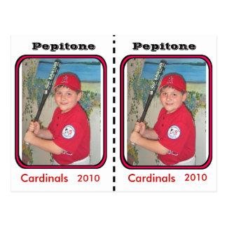 Cartão de basebol customizável