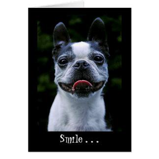 Cartão de Boston Terrier do sorriso