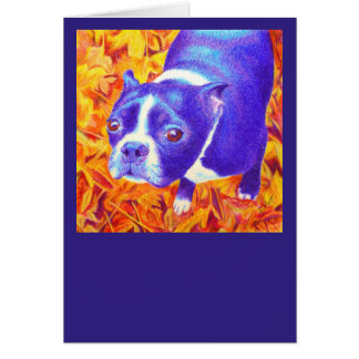 "Cartão de Boston Terrier - ""margarida """