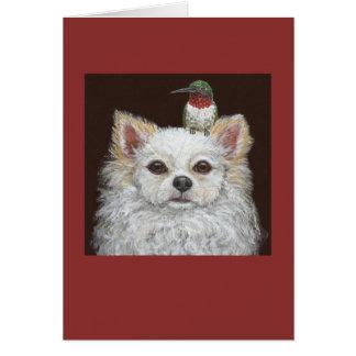Cartão de cabelos compridos da chihuahua