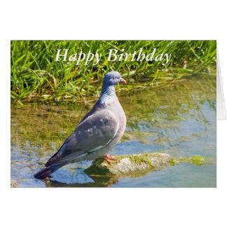 Cartão de cartões de aniversários feliz do bir do