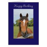 Cartão de cartões de aniversários feliz do cavalo