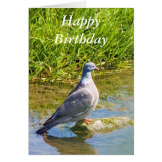 Cartão de cartões de aniversários feliz do pombo