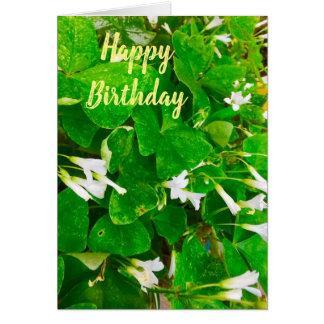 Cartão de cartões de aniversários irlandês do
