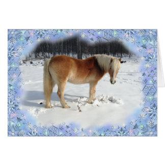 Cartão de cartões de natal do cavalo de Haflinger
