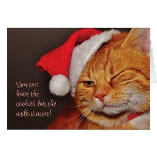 Cartão de cartões de natal do vazio do gato do