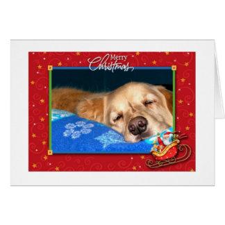 Cartão de cartões de natal sonolento do golden