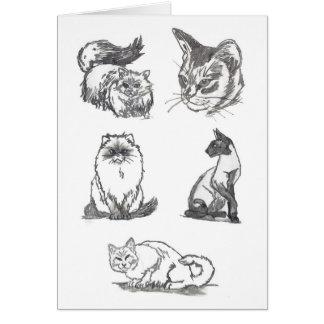 Cartão de cinco gatos por Nicole Janes