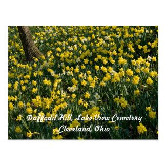 Cartão de Cleveland do monte do Daffodil