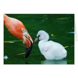 Cartão de cumprimento adulto do flamingo e do