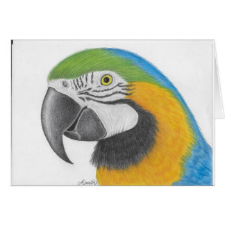 cartão de cumprimentos azul e amarelo do macaw