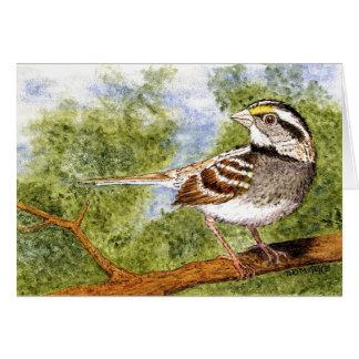 Cartão de cumprimentos Branco-Throated do pardal
