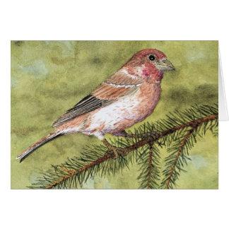 Cartão de cumprimentos do passarinho roxo