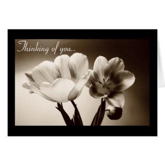 Cartão de Customizeable das tulipas do primavera
