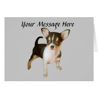 Cartão de Cutie da chihuahua