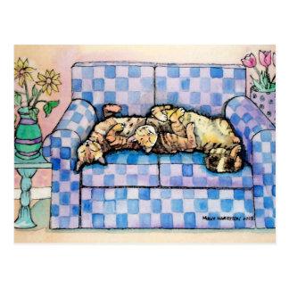 Cartão de dois gatos de gato malhado do sono cartão postal