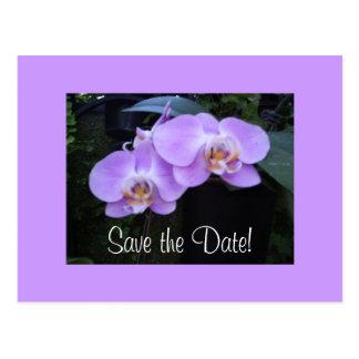 Cartão de duas orquídeas