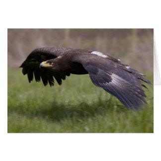 Cartão de Eagle dourado em vôo
