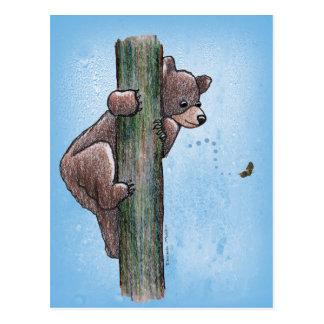 Cartão de escalada da árvore do urso