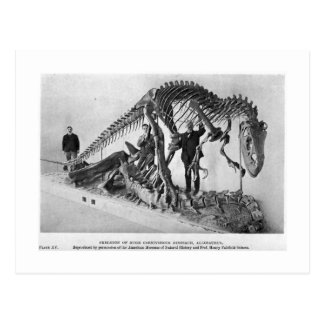 Cartão de esqueleto da arte do Allosaurus