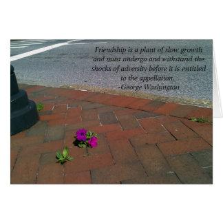Cartão de florescência da amizade