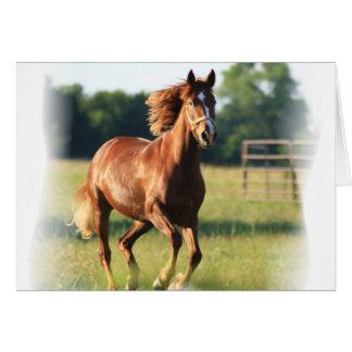 Cartão de galope do cavalo da castanha
