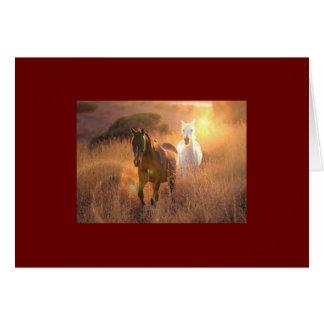 Cartão de galope dos cavalos selvagens