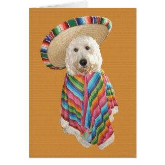 Cartão de Goldendoodle Cinco de Mayo