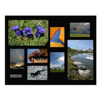 Cartão de Grindelwald