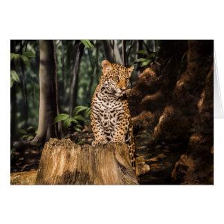 Cartão de Jaguar Cub
