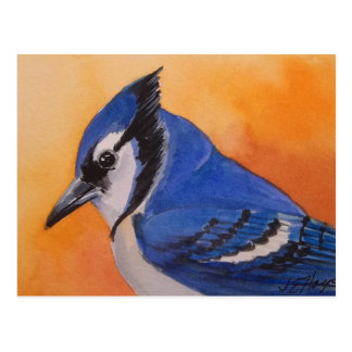 Cartão de Jay azul