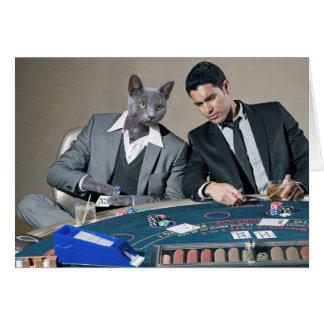 Cartão de jogo do gato de Catsino do casino