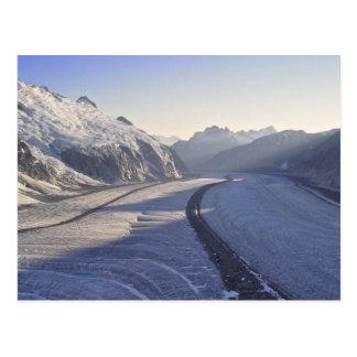 Cartão de Juneau Icefield