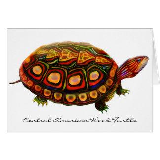 Cartão de madeira da América Central da tartaruga