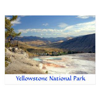 Cartão de Mammoth Hot Springs do parque de