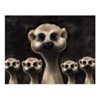 Cartão de Meerkat