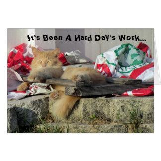Cartão de Nappin do gato
